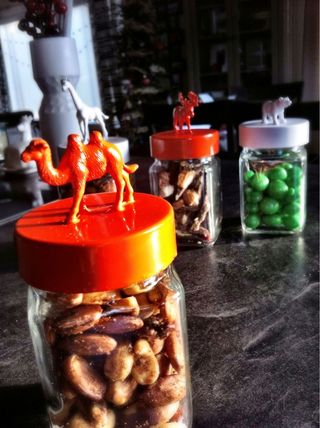 Animal Baking Jars